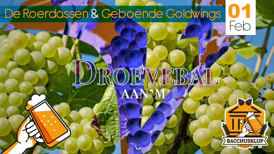 1 feb. Droevebal met o.a. De Roerdassen / 't Vaerhuis / Wessem
